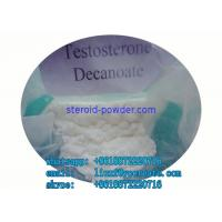 High Purity Raw Testosterone Decanoate steroid powder Muscle Building  Injectable 5721-91-5 Manufactures