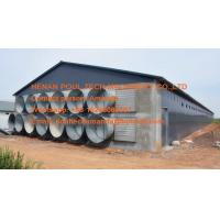 Chicken Farm Hot Galvanized Steel A  Type Automatic Layer Chicken Cage with 90-200 birds for Poultry House Manufactures