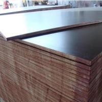 Dynea Brown Film Faced Plywood Manufactures