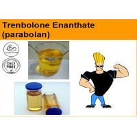 Tren E / Trenbolone Enanthate Injectable Anabolic Steroids ( Parabolan 100 & 200mg / ml ) Cas 10161-33-8 Manufactures