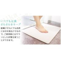 China Rapid Water Absorption Diatomite Bath Mat Instant Drying Waterproof Eco Friendly on sale
