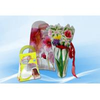 Plastic Package cosmetic box Manufactures
