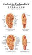 Auricular Acupunctrue Point Wall Chart (German-Chinese) Manufactures