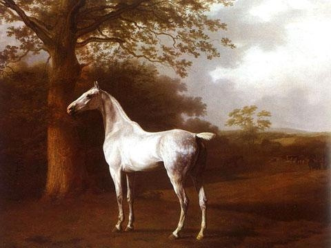 Quality Animal Oil Painting for sale