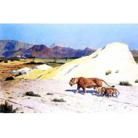 Buy cheap Animal Oil Painting from wholesalers