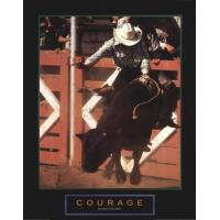Courage - Bull Rider - Unknown Manufactures