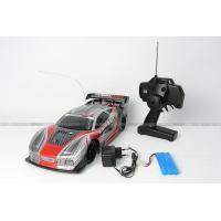 China RC Electric Car on sale