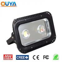 LED Flood Light 100WFlood light Manufactures