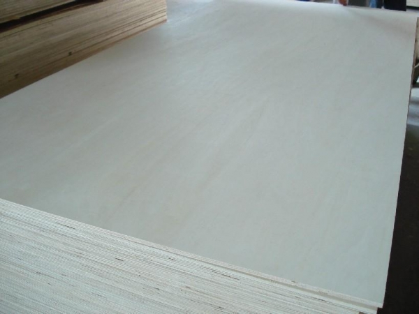 Quality plywood/Commercial plywood/Bintangor plywood for sale