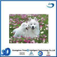 China Animal Office Stationery 3D Notebook 3D Lenticular Notebook With Dog Design on sale