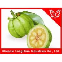 Loosing Weight Agents Best Garcinia cambogia extract powder Supplier Manufactures