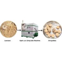 China hydraulic wood briquette machine on sale