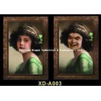 China XD-A003 Bloody Halloween Party Prop Scary Antique Grimace Monster Album Image Photo Picture Changing on sale