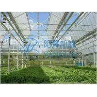China Item  Polycarbonate Sheet Greenhouse on sale