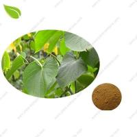 Kava Extract Manufactures