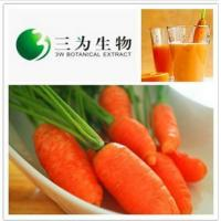 Fresh Vegetable Extract Carrot Extract from 3W Botanical Manufacturer Manufactures