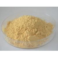 Natural and Quality Herbal Supplement Panax Ginseng Extract Powder Manufactures