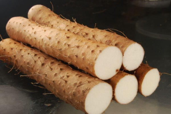 Quality Wild Yam Extract for sale