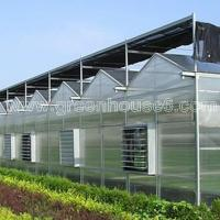 Solid PC Sheet Cover Material Industrial Polycarbonate Greenhouse Manufactures