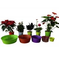 deep tray Manufactures