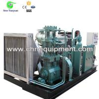 China Small Scale Vertical Type Motor Driving CNG Natural Gas Compressor on sale