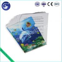 3D L-shape Document File Folder With Fish Manufactures
