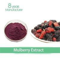 China Top quality Instant Pure mulberry juice powder applied in Energy Drink mulberry extract on sale