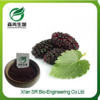 Mulberry Powder, High Quality Mulberry Extract Powder, Food Grade Instant Dried Mulberry Extract Manufactures