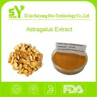 Polysaccharides Astragalus Extract/ Buy Best Organic Astragalu Membranaceus Root Extract Powder Manufactures