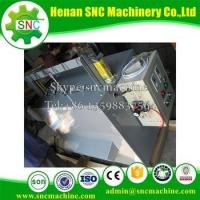 China Good price cashew apple juice making machine on sale