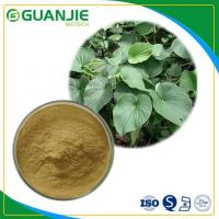 Kava Kava Root Extract Top Quality kavalactones with Dietary Supplement Manufactures