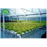 DFT Hydroponic Manufactures