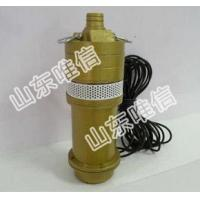 12V Portable Submersible Mini Water Pump Manufactures