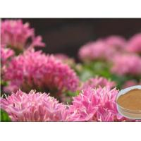 Rhodiola Rosea extract Manufactures