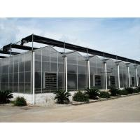 polycarbonate sheet greenhouse Manufactures