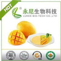 100% Natural Fruit Powder Mango Juice Powde for Beverage Manufactures