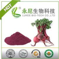 Health Product Beta Vulgaris Red Beet Root Powder Manufactures