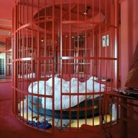 Buy cheap Bdsm Bedroom One Apartments In Tampa Fl from wholesalers