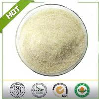 Hot Sale Water Soluble Hydroxypropyl Chitosan Manufactures