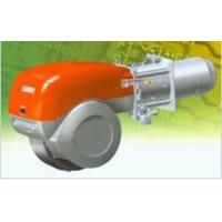 Riello gas burner Manufactures