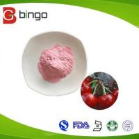 Fruit Powder Manufactures