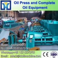 Professional manufacturer large output 24T/Day screw hemp seed oil press