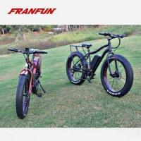 China Powerful mountain style electric fat bike pedal assist 350w36v battery bike mountain on sale