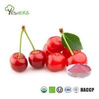 Cherry Juice Concentrate Powder Manufactures