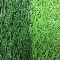 China Soccer Synthetic Artificial Grass For Football Fields on sale
