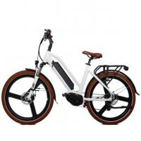 36v Battery Mid Drive Electric Bicycle Made in China Manufactures
